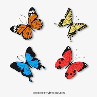 Papillons réalistes