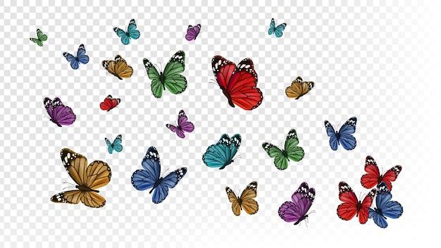 Papillons volants. papillon coloré isolé sur fond transparent.