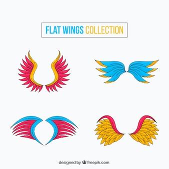 Paquet d'ailes colorées dessinées
