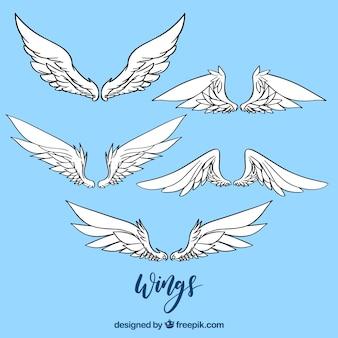 Paquet d'ailes dessinées à la main