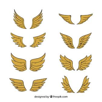 Paquet d'ailes dorées dessinées