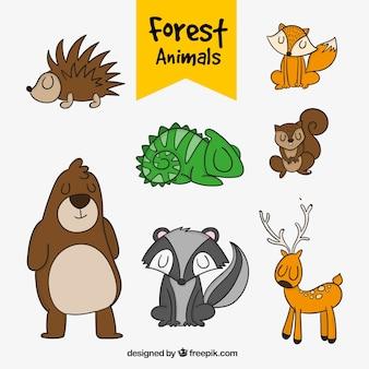 Paquet d'animaux forestiers dessinés à la main