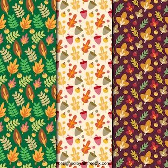 Paquet de l'automne dessiné à la main laisse des motifs