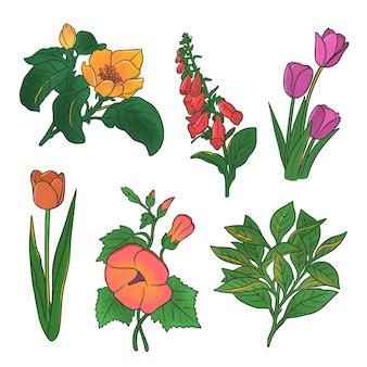 Paquet de belles fleurs dessinées à la main