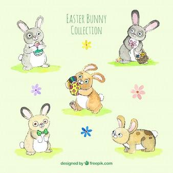 Paquet de cinq dessinés à la main aquarelle bunnies easter