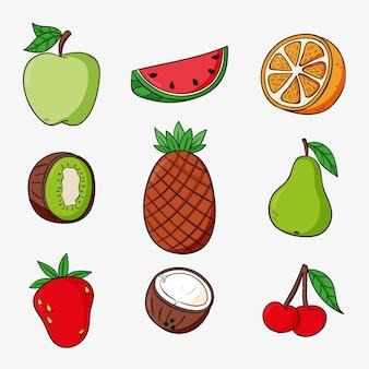 Paquet de délicieux fruits dessinés à la main