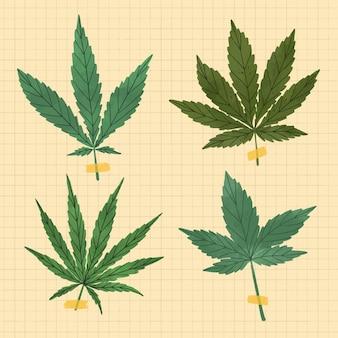 Paquet de feuilles de cannabis botanique dessinées