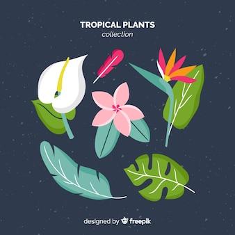 Paquet de feuilles et de fleurs tropicales plates