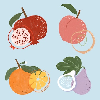 Paquet de fruits dessinés à la main