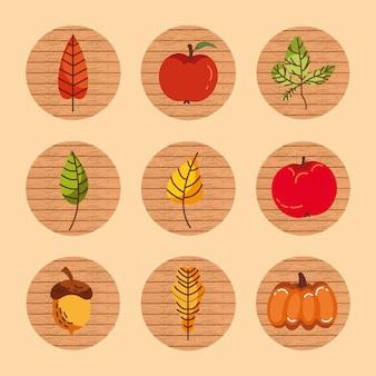 Paquet de fruits et feuilles d'automne