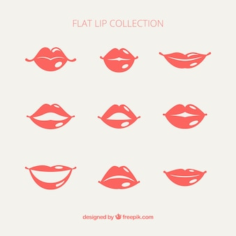 Paquet de lèvres féminines