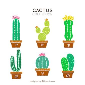 Paquet de pots avec des cactus dessinés à la main