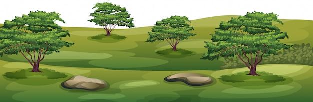 Parc vide avec arbres et rochers