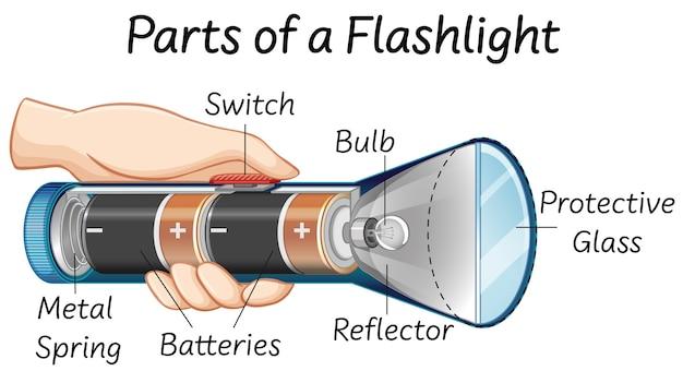 Parties d'une lampe de poche