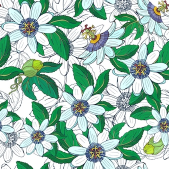 Passiflora de passiflore, fruit de la passion sur fond blanc.modèle sans couture floral avec de grandes fleurs exotiques lumineuses, bourgeon et feuille.illustration d'été pour impression textile, tissu, papier d'emballage.