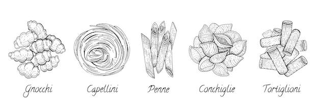 Pâtes italiennes. ensemble de croquis de nourriture. macaroni doodle. capellini, conchiglie, tortiglioni, penne, gnocchi