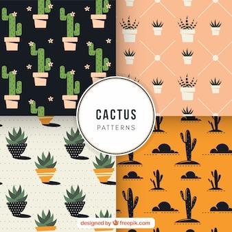 Patrons de cactus avec style classique