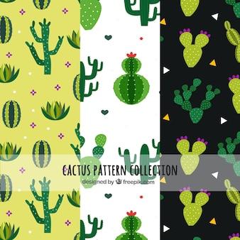 Patrons de cactus avec style dessiné à la main