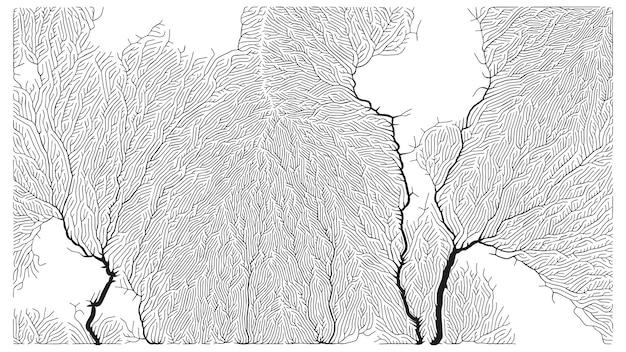 Patterne de croissance. structure de branchement générative. filet organique de texture de navires.