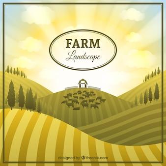 Paysage agricole mignon