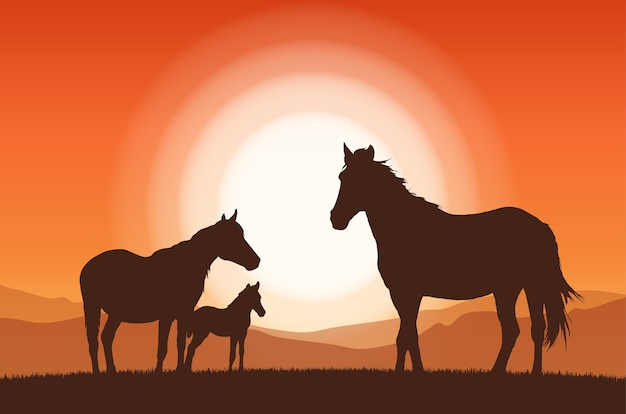 Paysage avec coucher de soleil et silhouette de chevaux de la famille.