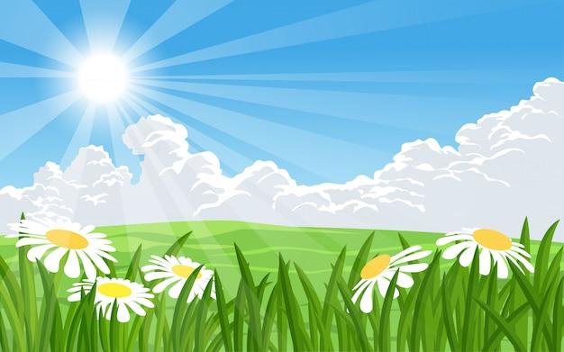 Paysage d'été avec des fleurs