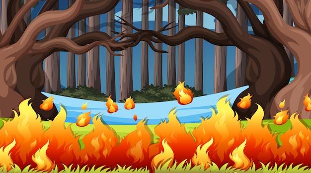Paysage de fond de scènes d'environnement naturel
