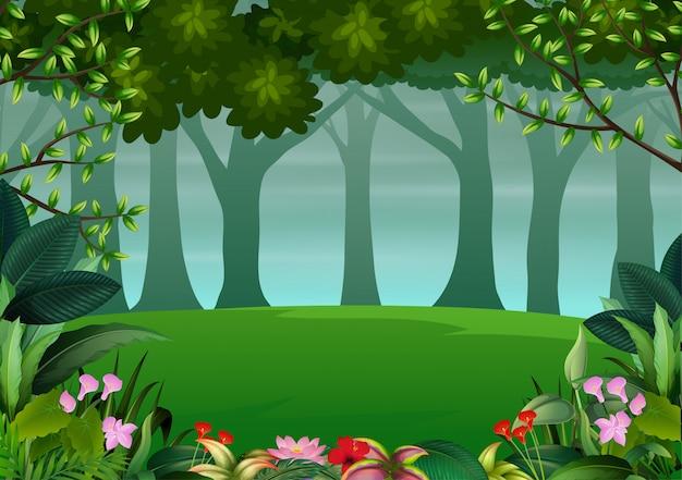 Un paysage forestier naturel avec des plantes et des arbres