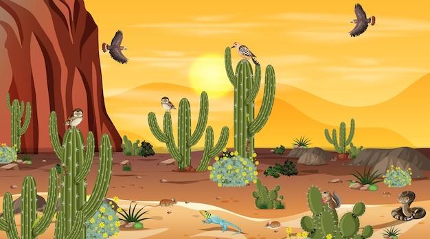 Paysage de forêt désertique au coucher du soleil avec des animaux et des plantes du désert