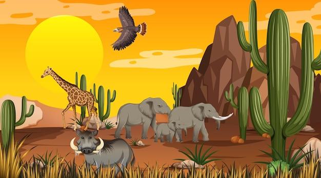 Paysage de forêt désertique au coucher du soleil avec des animaux sauvages