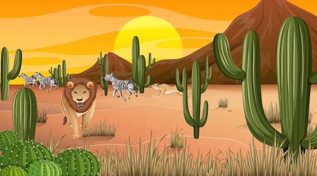 Paysage de forêt désertique à la scène de l'heure du coucher du soleil