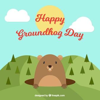 Paysage groundhog fond de jour avec des pins