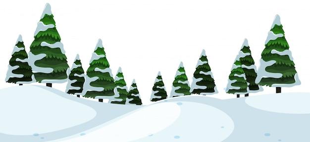 Un paysage d'hiver en plein air