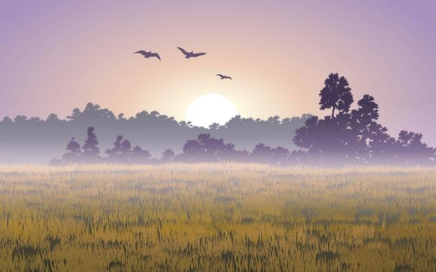 Paysage de lever de soleil brumeux avec des oiseaux en vol