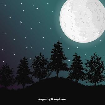 Paysage avec la lune et les arbres