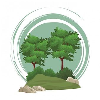 Paysage nature arbres