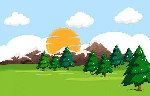 Un paysage de nature simple