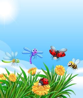 Paysage avec de nombreux insectes différents