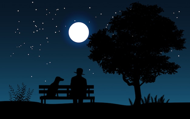 Paysage de nuit avec un homme assis sur un banc avec son chien en regardant le ciel étoilé