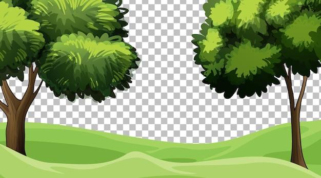 Paysage de scène de nature vierge sur fond transparent