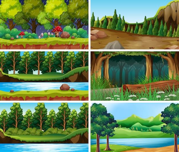 Paysage scènes de nature