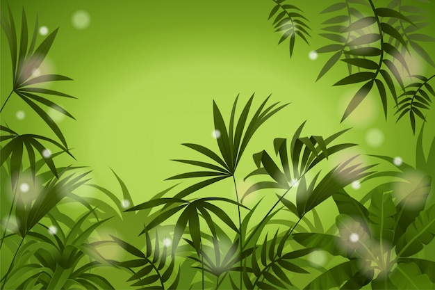 Paysage tropical.