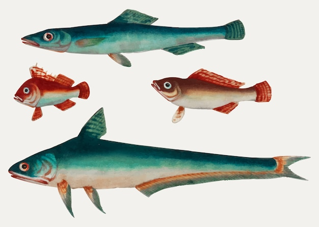 Peinture chinoise de deux poissons verts et de deux poissons bruns.
