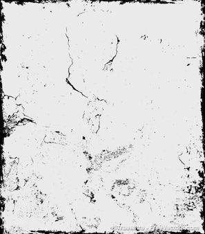 Pelage noir mur et fond blanc