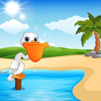 Pelican cartoon dans la baie de la plage