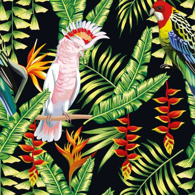 Perroquet tropical, fleurs, liane, feuilles