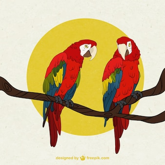 Perroquets sur une illustration de la branche