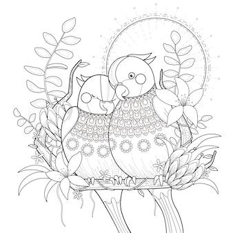 Des perroquets noirs et blancs se blottissent les uns contre les autres au coucher du soleil, pour la coloration