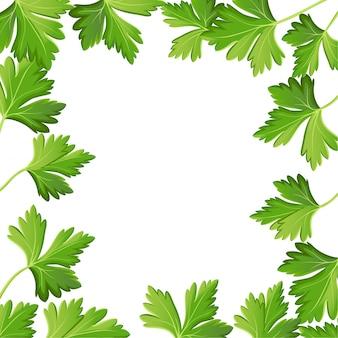 Persil sur élément d'illustration photo-réaliste blanc dans la cuisine, ingrédient de cuisine, décoration d'emballage, autocollant, étiquette.