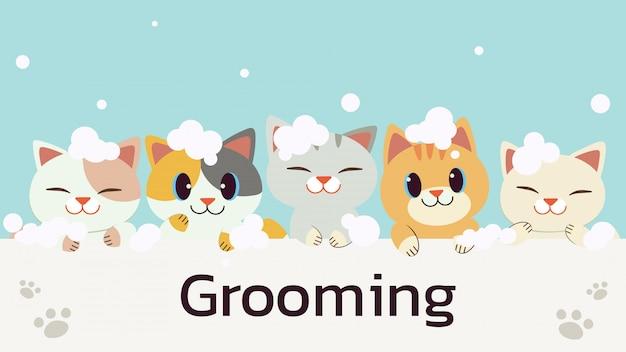 Le personnage de chat mignon avec une bulle de savon dans un style plat. illustation sur le toilettage des chats et les soins de santé
